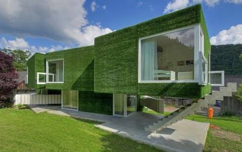Green Home Design: What's Involved?